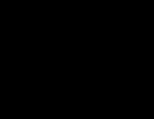 bison silhouette